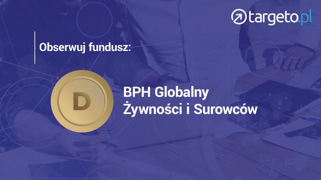 Obserwuj fundusz: BPH Globalny Żywności i Surowców