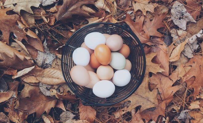 Jajecznica na maśle – danie luksusowe, tylko dla wybranych